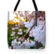 Einstein's Blossoms Tote Bag