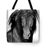 El Caballo Negro Tote Bag