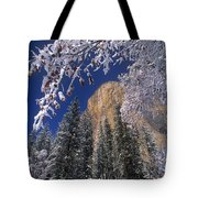 El Capitan Framed By Snow Covered Black Oaks California Tote Bag