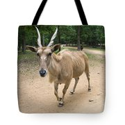 Eland Antelope Out In The Open Tote Bag