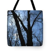 Elder Maple Silhouette Tote Bag