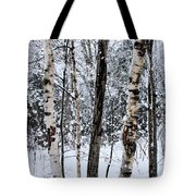 Elders In A High Country Grove Tote Bag