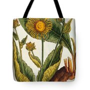 Elecampane Tote Bag by Elizabeth Blackwell