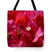 Electric Pink Bougainvillea Tote Bag