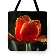 Elegance Of Spring Tote Bag
