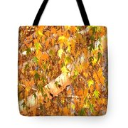 Elegant Autumn Branches Tote Bag