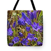 Elegant Brodiaea In Tilden Regional Park-california   Tote Bag