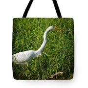 Elegant Hunter Tote Bag