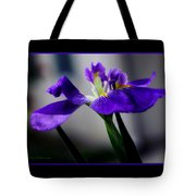 Elegant Iris With Black Border Tote Bag
