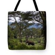 Elephant   #0068 Tote Bag