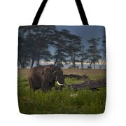 Elephant   #0134 Tote Bag