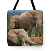 Elephant Bath Tote Bag