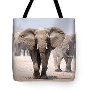 Elephant Bathing Tote Bag by Johan Swanepoel