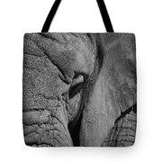 Elephant Bw Tote Bag