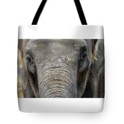 Elephant Close Up 1 Tote Bag