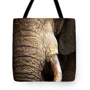 Elephant Close-up Portrait Tote Bag by Johan Swanepoel