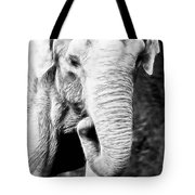 Elephant IIi Tote Bag