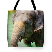 Elephant In Water Tote Bag