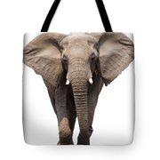 Elephant Isolated Tote Bag
