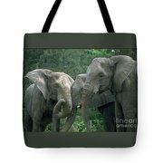 Elephant Ladies Tote Bag