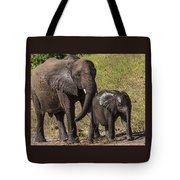 Elephant Mom And Baby Tote Bag