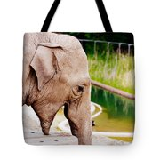 Elephant Open Mouth Tote Bag