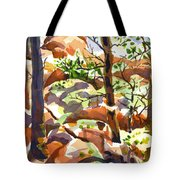 Elephant Rocks Revisited IIb Tote Bag