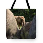 Elephant Spotted Between Rocks Tote Bag