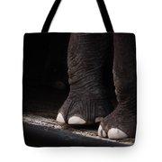Elephant Toes Tote Bag by Bob Orsillo