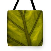 Elephant's Ear   #4754 Tote Bag