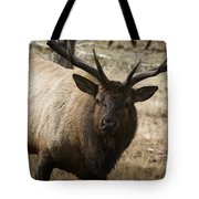 Elk-animals-image Tote Bag