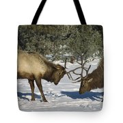 Elk  Bulls Fighting In Yellowstone Tote Bag