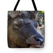 Elk Chuckle Tote Bag