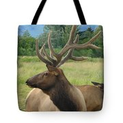 Elk Couple Tote Bag
