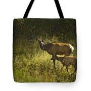 Elk Doe And Fawn-signed  #4465 Tote Bag