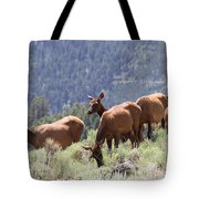 Elk Family - Yellowstone N P Tote Bag