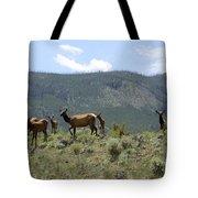 Elk Family Tote Bag