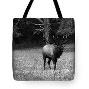 Elk In Black And White Tote Bag