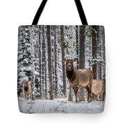 Elk In Jasper Tote Bag