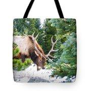 Elk In Snow Tote Bag