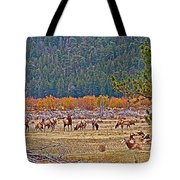 Elk Near Cub Lake Trail In Rocky Mountain National Park-colorado  Tote Bag
