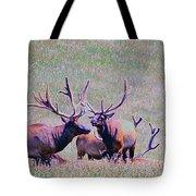Elk On The Plains 2 Tote Bag