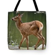 Elk Pictures 74 Tote Bag