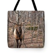 Elk Pictures 86 Tote Bag