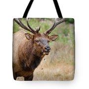 Elk Staring Tote Bag