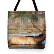 Elk Cooling Down In Lake Tote Bag