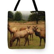 Elks Lodge Tote Bag