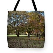 Ellison Park Tote Bag