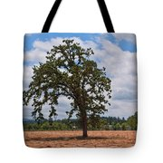 Elm Tree In Hay Field Art Prints Tote Bag