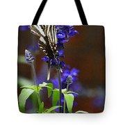 Elusive Zebra Swallowtail Tote Bag